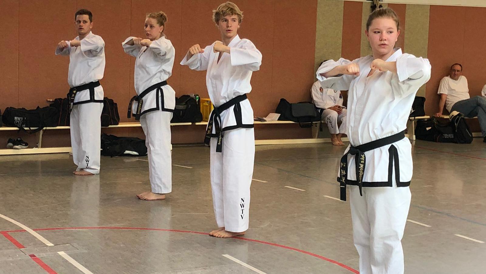Besorgniserregendste Entwicklung im ITF Taekwon-Do